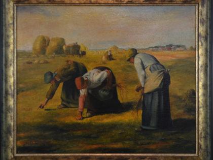 Kobiety w polu – kopia